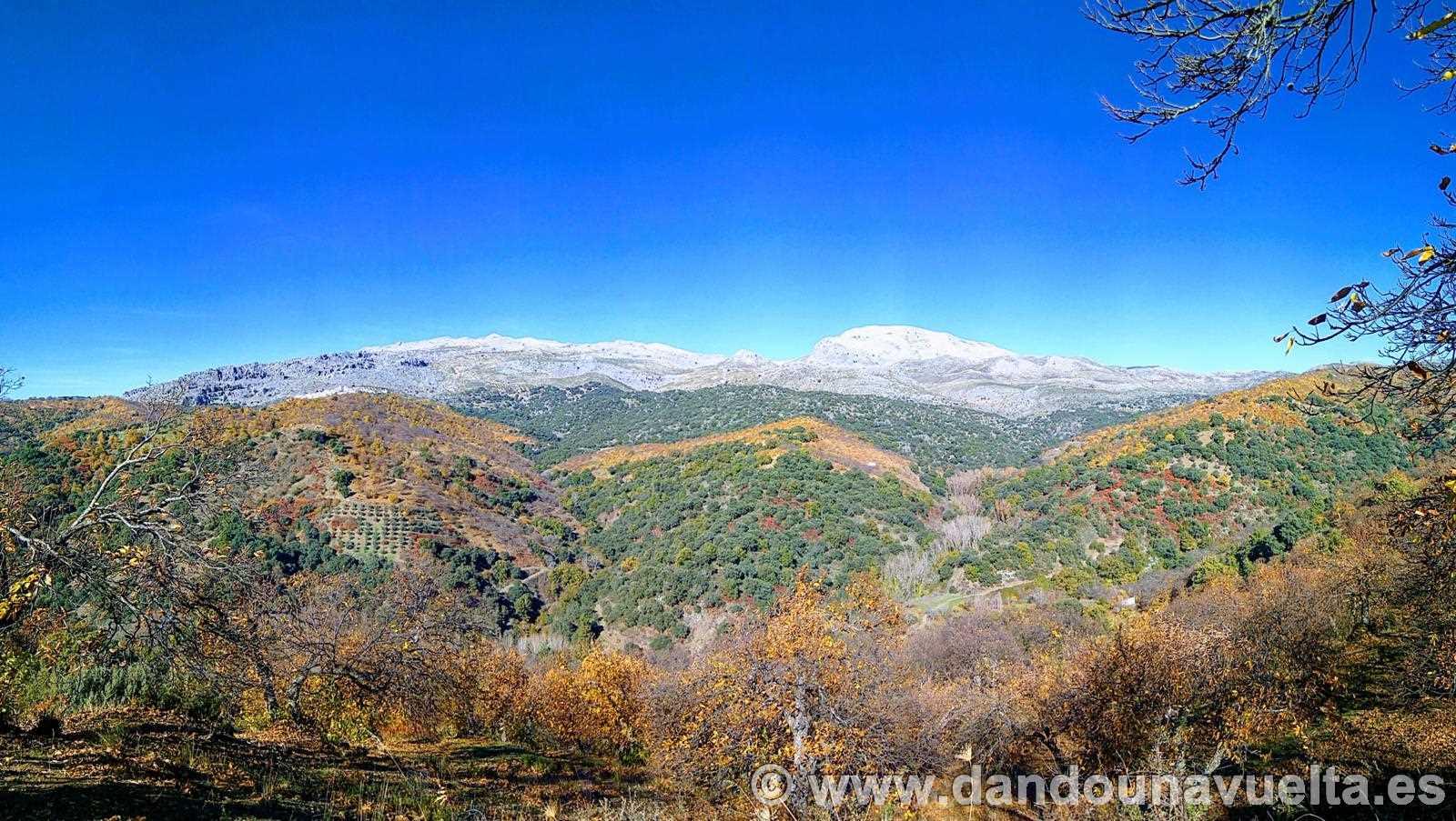 Panorámica mezcla de colores, en la ruta de senderismo de los castaños Parauta Alto Genal