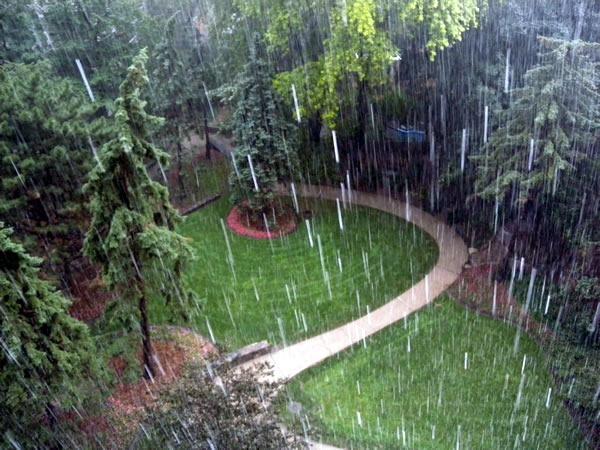 Vegetable Garden In Fall Wallpaper Bharat Dream Home Rainy Season Grow Plants