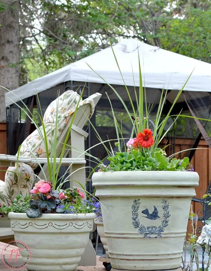 Terracotta French Country Pots With French Graphic