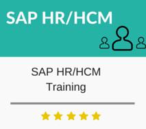 SAP HR / HCM Training