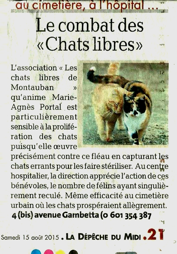 chatteenchaleur