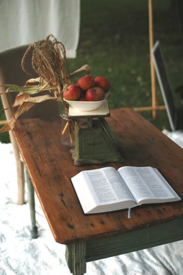 Scripture study in the sukkah | Land of Honey
