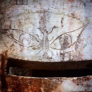 Un grabado de un insecto al que alguien pintó una silueta alrededor que hace que su forma parezca la de un extraño ser.