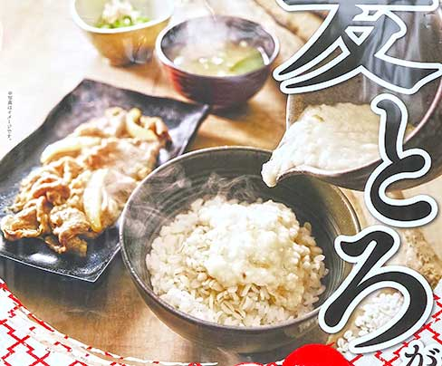 Top 3 Gyudon Restaurants in Japan