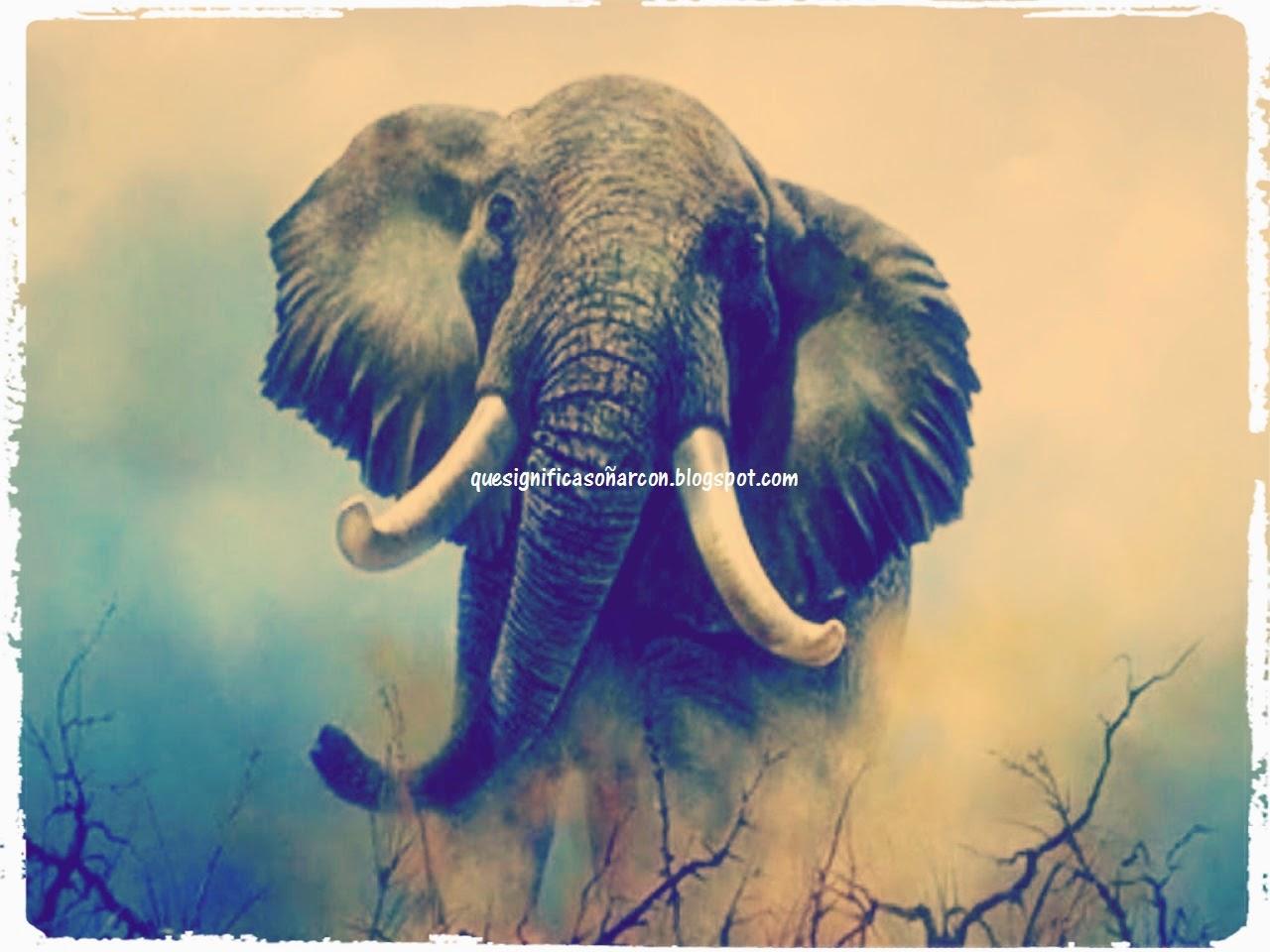 porque soñamos con elefantes