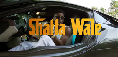 Shatta Wale - Dem Confuse Video