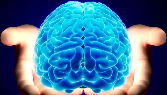 Inilah Enam Fakta Seputar Otak Manusia Yang Sebaiknya Kamu Tahu