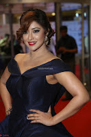Payal Ghosh aka Harika in Dark Blue Deep Neck Sleeveless Gown at 64th Jio Filmfare Awards South 2017 ~  Exclusive 137.JPG