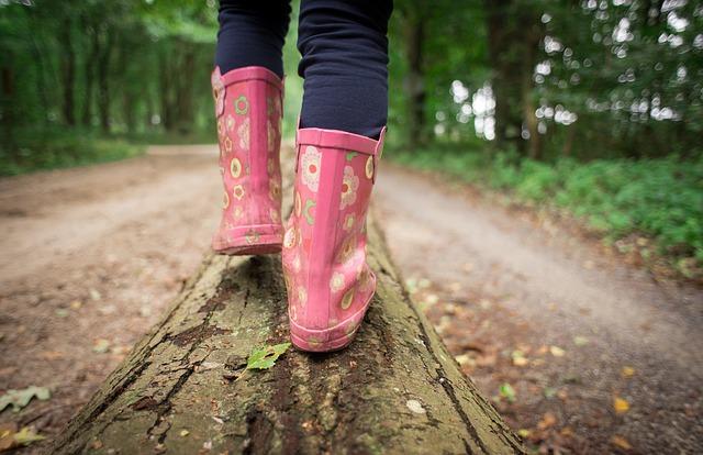 ảnh cô gái đi vào rừng thu