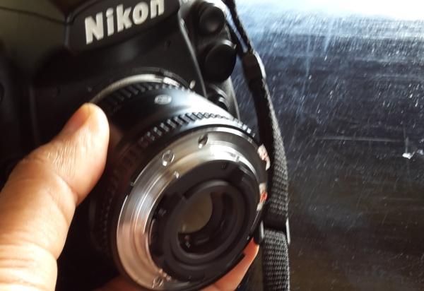 Cara mennggunakan lensa 50 mm untuk foto makro dengan cara dibalik