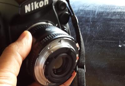 Cara memasang lensa pada body kamera dengan teknik lensa dibalik untuk fotografi makro