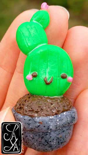 Cute cactus - Mignon cactus
