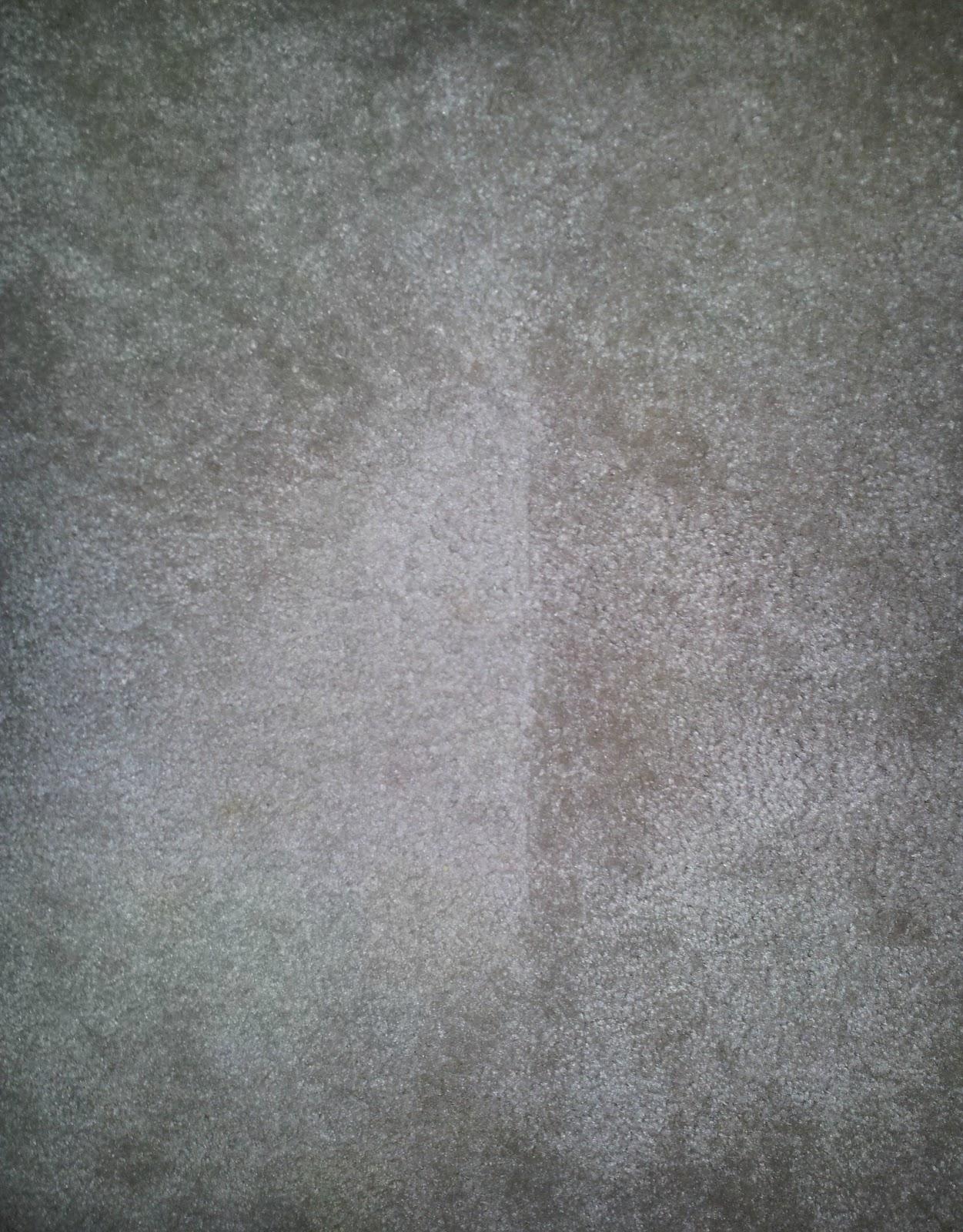 Rantin Amp Ravin Carpet Cleaning
