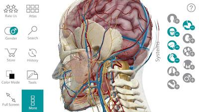 human anatomy atlas sc 2