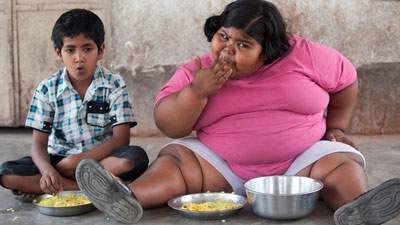 Banyak Makan, gemuk, obesitas, kegemukan