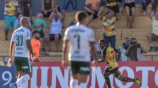 Novorizontino e Palmeiras empatam no jogo de ida das quartas de final