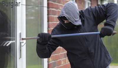 burglar occupation