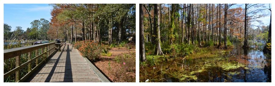 Wilmington aux couleurs de l'automne