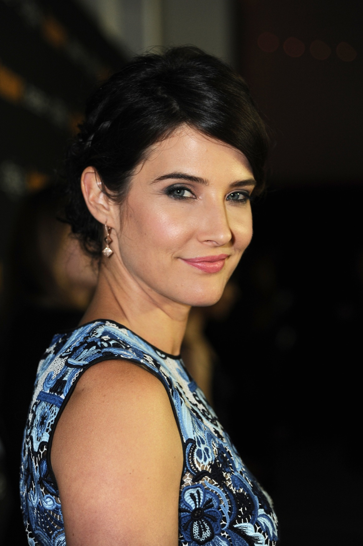 Cobie Smulders Pictures Gallery (108)