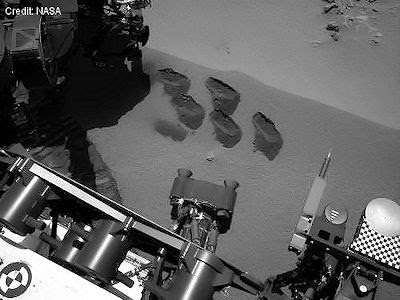 Curiosity  Five Scoops