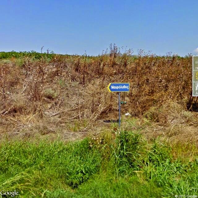 streetview%2B(4) - Αφιέρωμα στο μικρό χωριό του δήμου Τυρνάβου