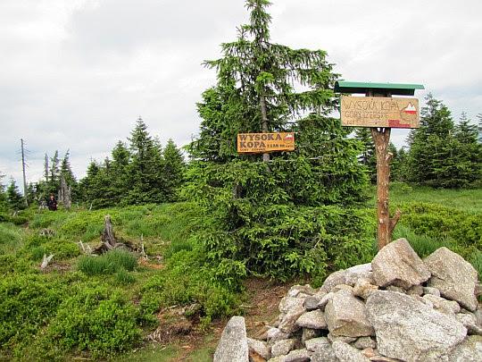 Wysoka Kopa (niem. Hinterberg, 1126 m n.p.m.) - najwyższy szczyt Gór Izerskich.