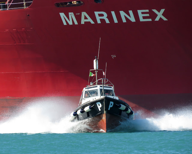 Tanker Marinex, IMO 9074420, pilot boat, port of Livorno