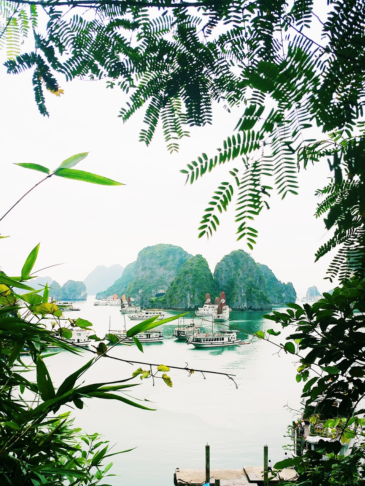 Honeymoon with the tasteful me Vietnam Ha Long Bay