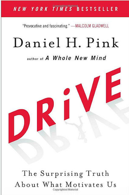 Driven The Surprising Truth About What Motivates Us by Daniel H Pin