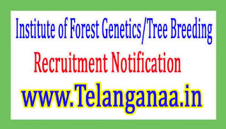 Institute of Forest Genetics/Tree BreedingIFGTB Recruitment Notification 2017