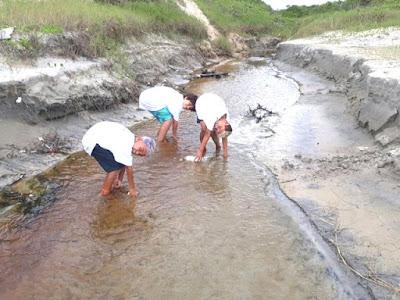 De norte a sul, mutirão de limpeza nas praias foi um sucesso em Ilha Comprida