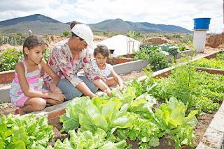Conviver com a seca é aprendizado constante do povo do semiárido