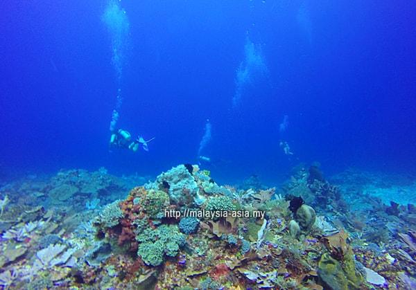 Scuba Sites Alor Island
