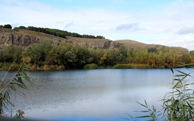 Laguna de los Venenos