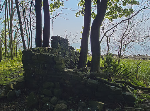 Ruins on Charles Island, Milford CT