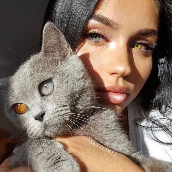 صور خلفيات بنات مع قطط كيوت جديده 2018 مصراوى الشامل