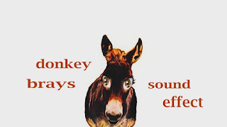 learn donkey sounds