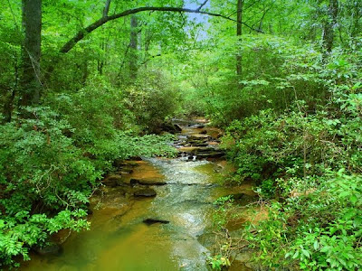 Panther Creek in the  Chattahoochee National Forest, Georgia