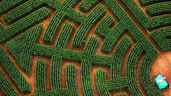 Reignac-sur-Indre Maze, Labirin Alam di Prancis