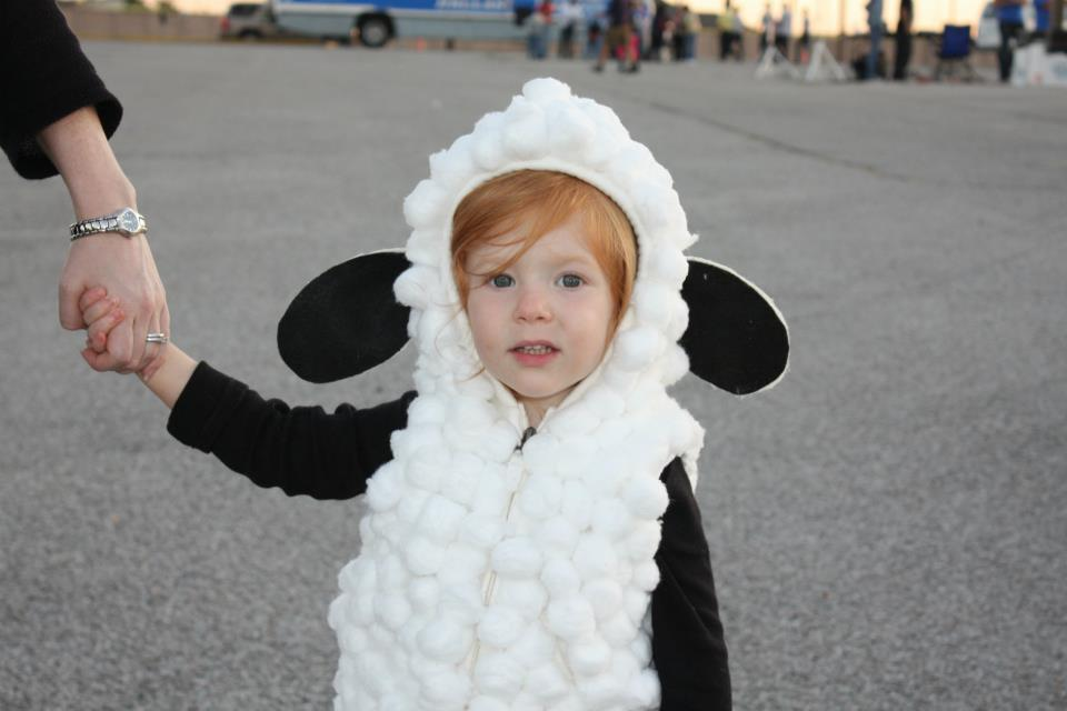 Terrific Toddler Halloween Costume Ideas | Carnavales Disfraces de bebé y Bebé  sc 1 st  Pinterest & Terrific Toddler Halloween Costume Ideas | Carnavales Disfraces de ...