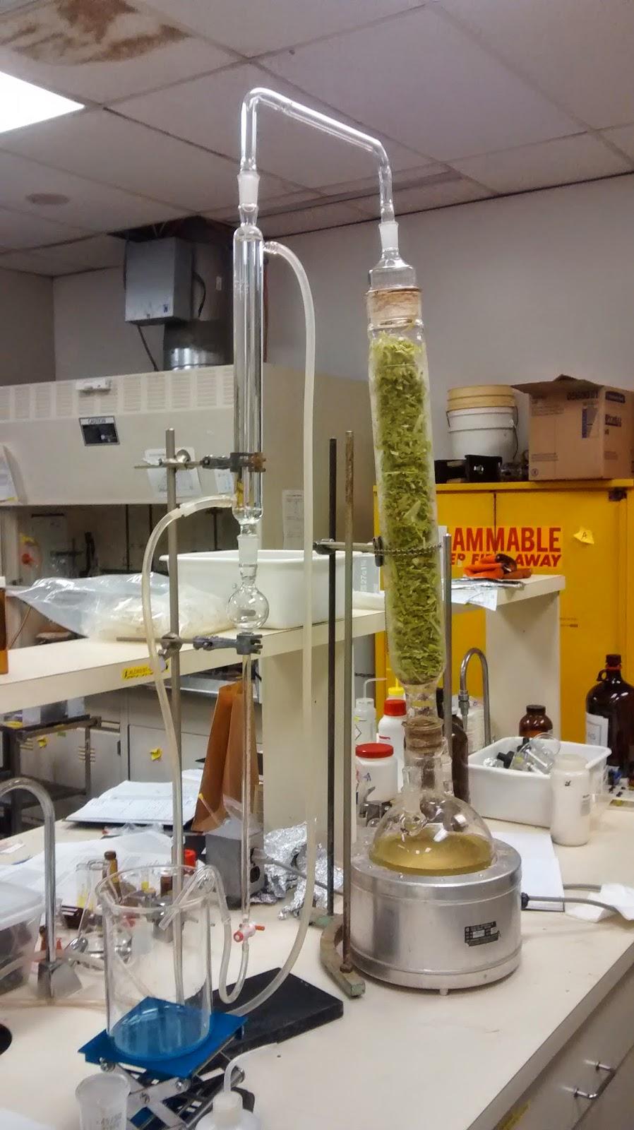 Le blogue de PhytoChemia: L'extraction d'huiles essentielles en laboratoire