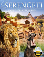 Serengeti: Nature's Greatest Journey (2015)