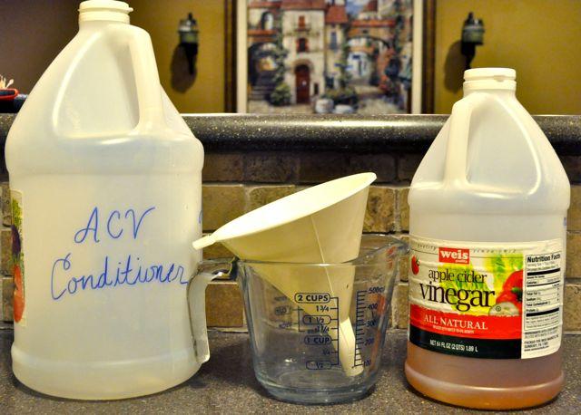 Ingredients for Apple Cider Vinegar Conditioner