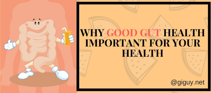 Why Is a Good Gut Health Important For Your Overall Well-Being?