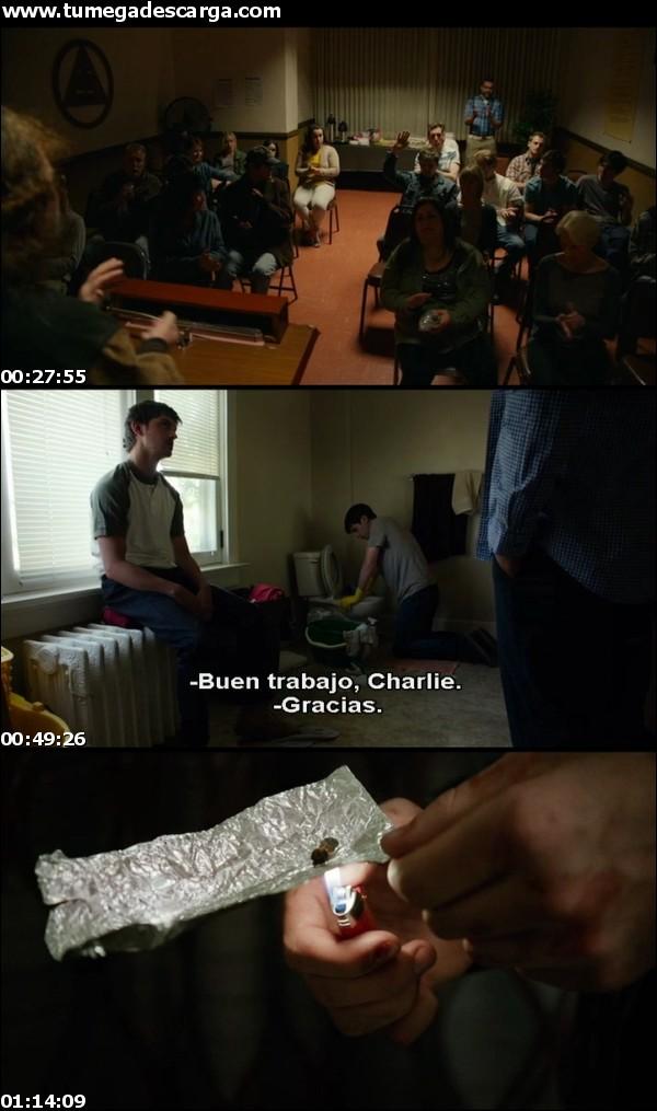 descargar Being Charlie