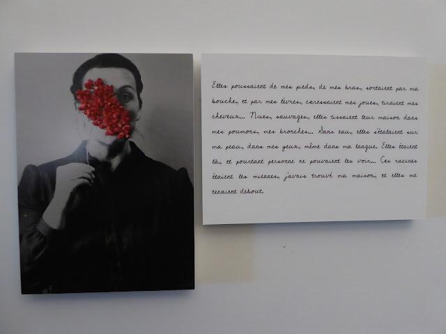 NIa Diedla : Maleza au festival  Itinéraires des photographes voyageurs  à Bordeaux
