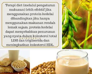Terapi Diet dan Kolesterol terbaik dengan (isoflavon) Kedelai   #2