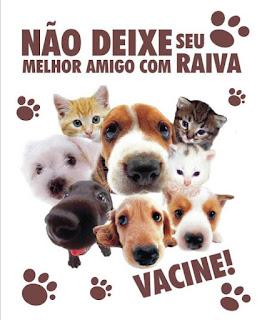 Vacinação de cães e gatos