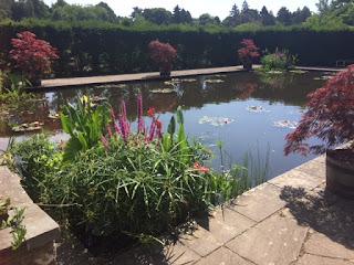 Reflecting Pool Dyffryn