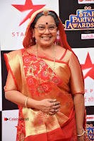 Star Parivaar Awards 2017 Red Carpet Stills .COM 0054.jpg